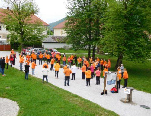 Regijsko srečanje skupin DŠZ v Kamniku in 10. obletnica prve kamniške skupine