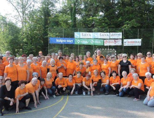Srečanje belokranjskih skupin DŠZ na Dan sosedov – Semič, 5. 6. 2019