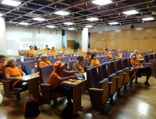 Regijski posvet in srečanje s posavskimi skupinami Društva Šola zdravja v Krškem in Brežicah
