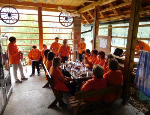 Regijski posvet in srečanje z goriškimi skupinami Društva Šola zdravja